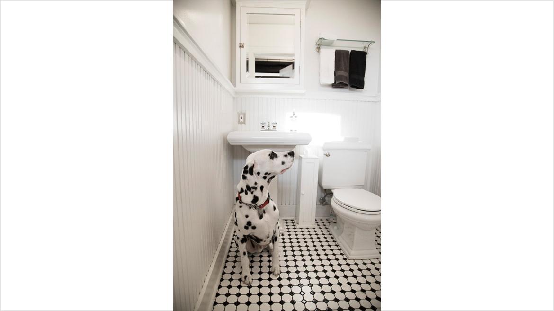 Restroom_B4A9884_V1LoRes50